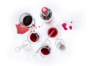 Vineyard Tour, Wine Tasting & Blending Workshop
