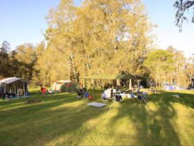 Campers in the shade at Violet Hill campground. Photo: Shane Chalker