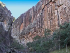 Waa Gorge walking track, Mount Kaputar National Park. Photo: Jessica Stokes