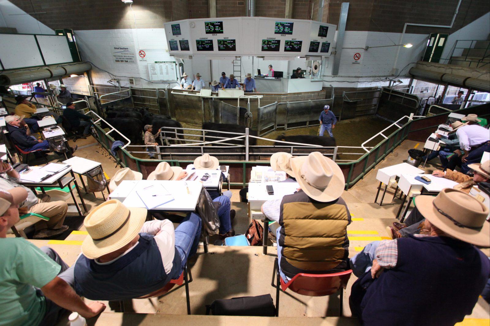 Wagga Wagga Livestock Marketing Centre