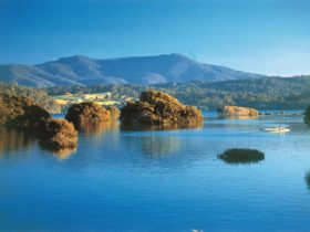 Wagonga Picnic Area