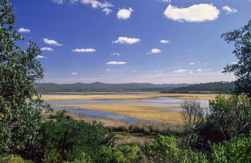 Wallagoot Lake Picnic Area and Boat Ramp