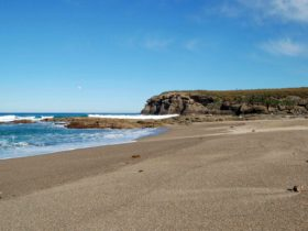 Coastal walk. Photo: NSW Government