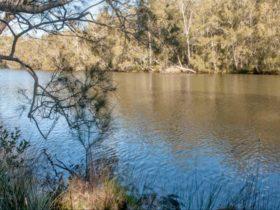 Wandandian Creek picnic area