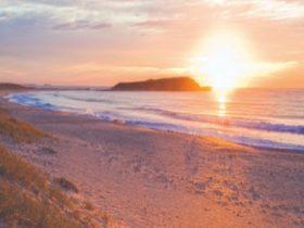 Warilla Beach, Shellharbour VisitNSW