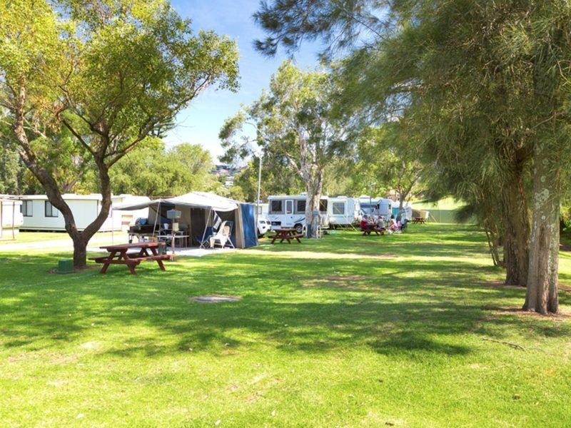 Camping sites at Werri Beach Holiday Park