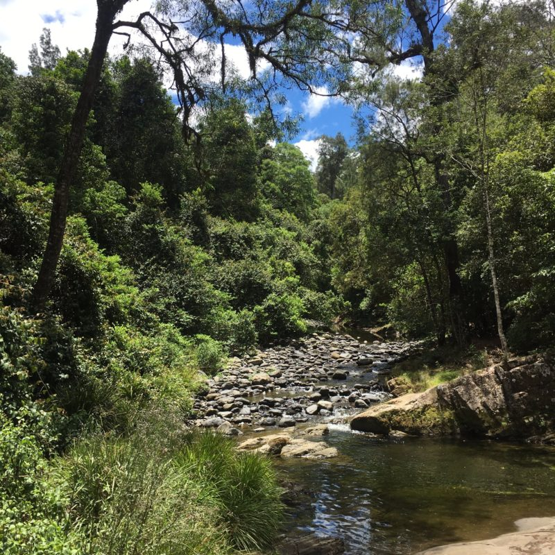 White Rock, Chichester State Forest