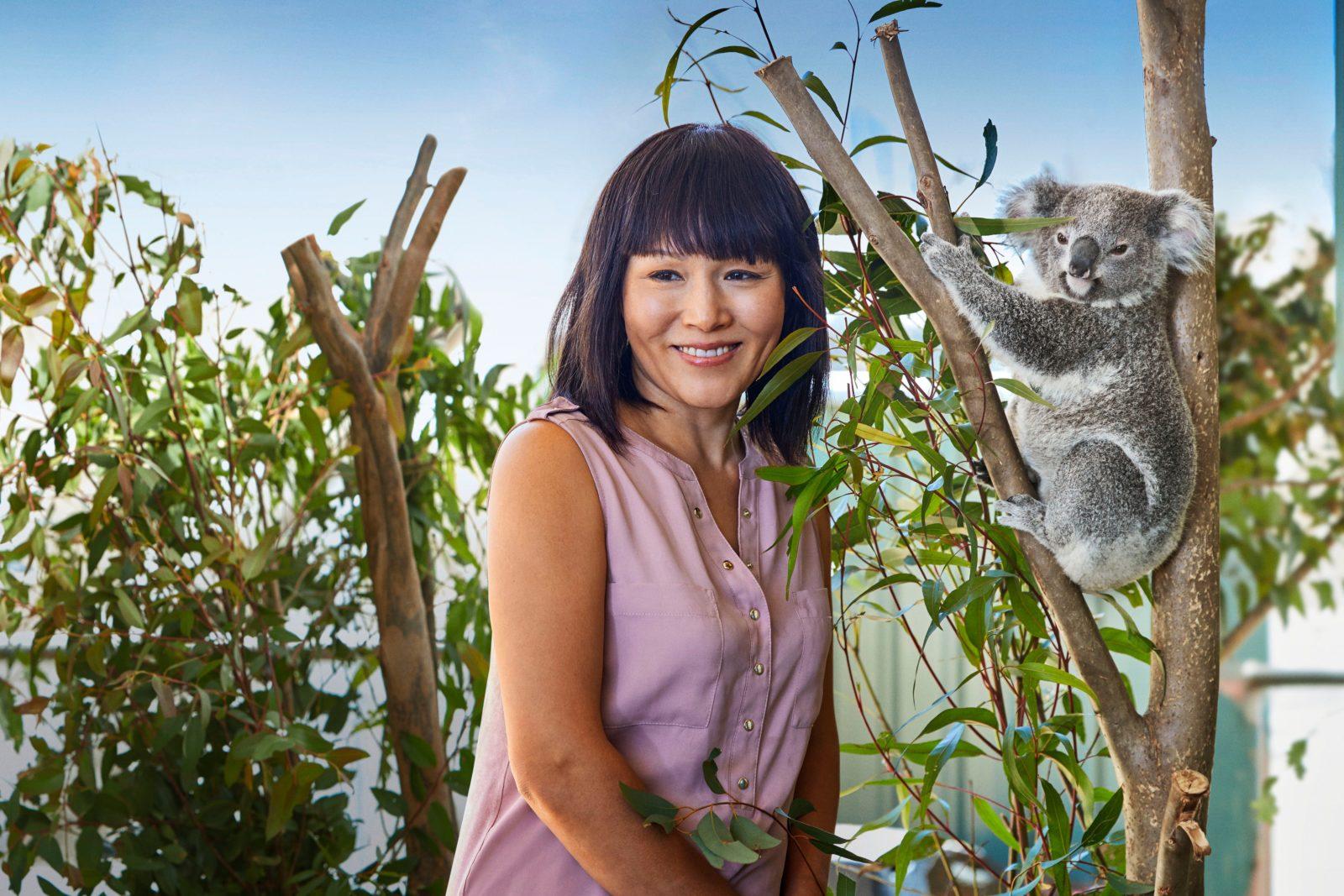 Koala Encounters