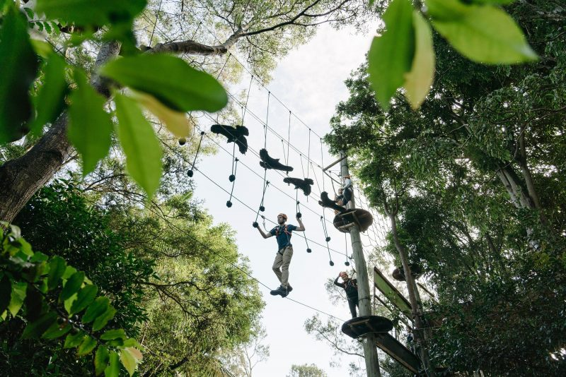Wild Ropes at Taronga Zoo Sydney - Adults and Juniors Course