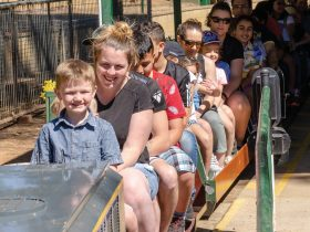 Willans Hill Miniature Railway - Wagga Wagga