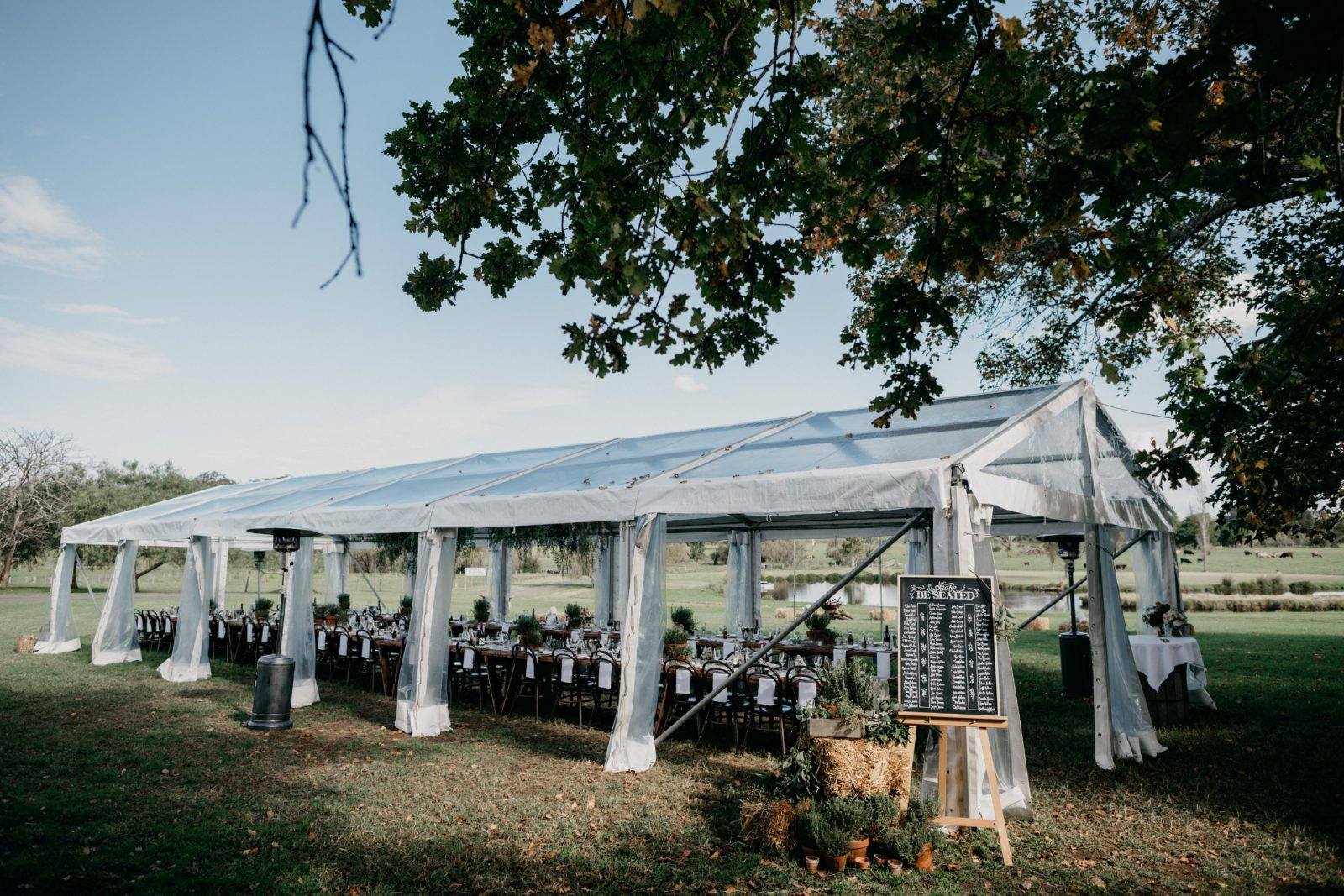 Marquee by Mitch Pohl
