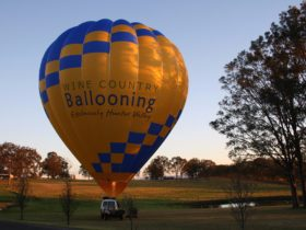 Wine Country Ballooning