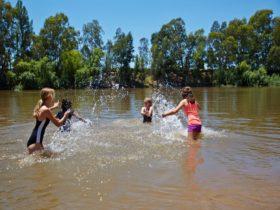 Wiradjuri Reserve in Wagga Wagga
