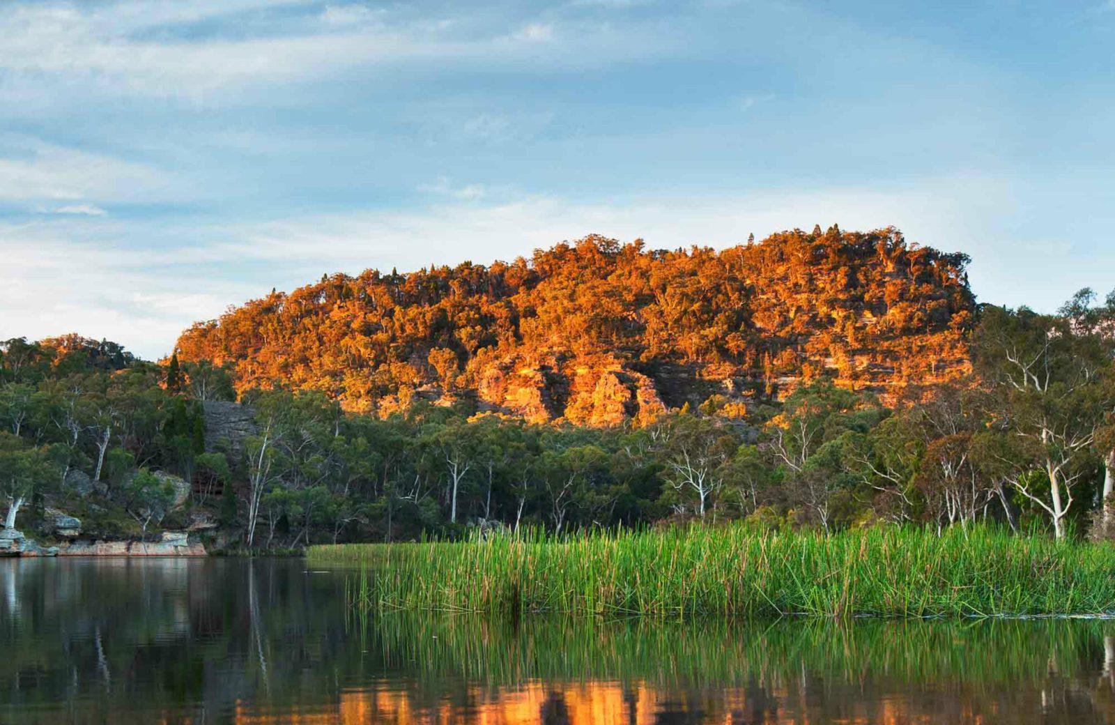 Dunns Swamp - Ganguddy campground, Wollemi National Park. Photo: Ingo Oeland