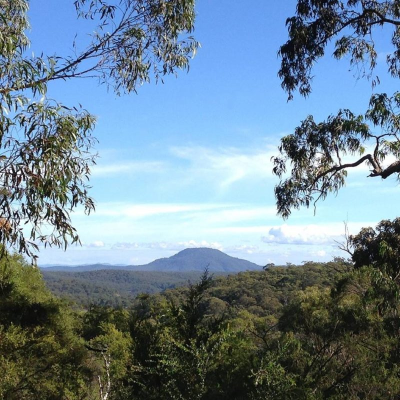 Mount yengo