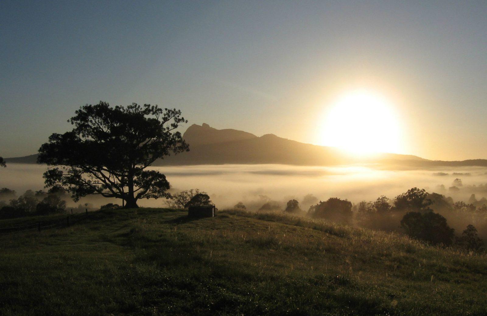 Sunrise, Wollumbin National Park. Photo: S Foreman.