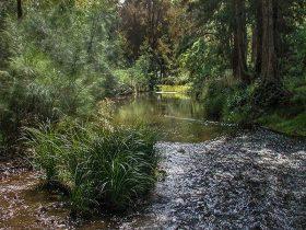 Turon River, Turon National Park. Photo: OEH