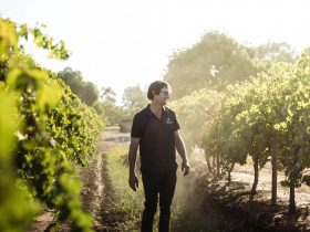 Sam Brewer - Winemaker