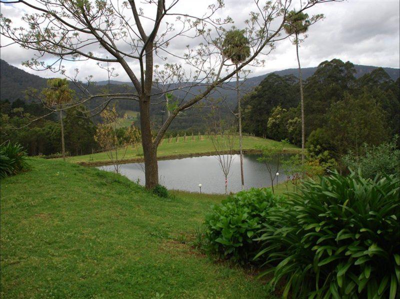 Yarrawa Estate