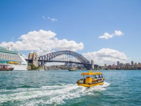 Sydney Harbour Sightseeing Cruise