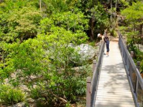 Yuelarbah Track, Glenrock State Conservation Area. Photo: Shaun Sursok/NSW Government