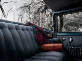Interior of a car showing upholstery and fluffy rug with winter view outside