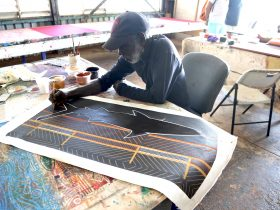 painter, Tiwi Islands, Aboriginal Art, Art tours