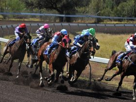 Alice Springs Turf Club - Alice Springs Area Northern Territory