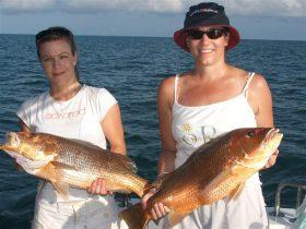 Arafura Bluewater Charters, Darwin Area, Northern Territory, Australia