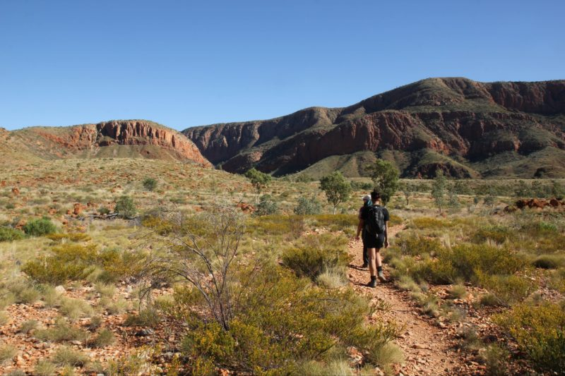 Walking towards Ormiston Gorge