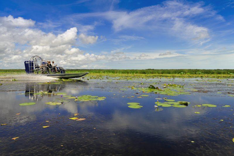Airboat Safari