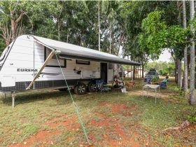 caravan-rv-park-banyan-tree-holiday-park-litchfield
