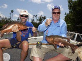 Borroloola - Katherine Area - Northern Territory