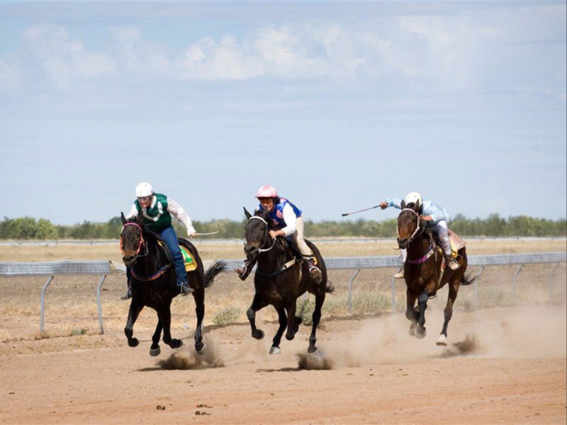 Race horses on the final straight