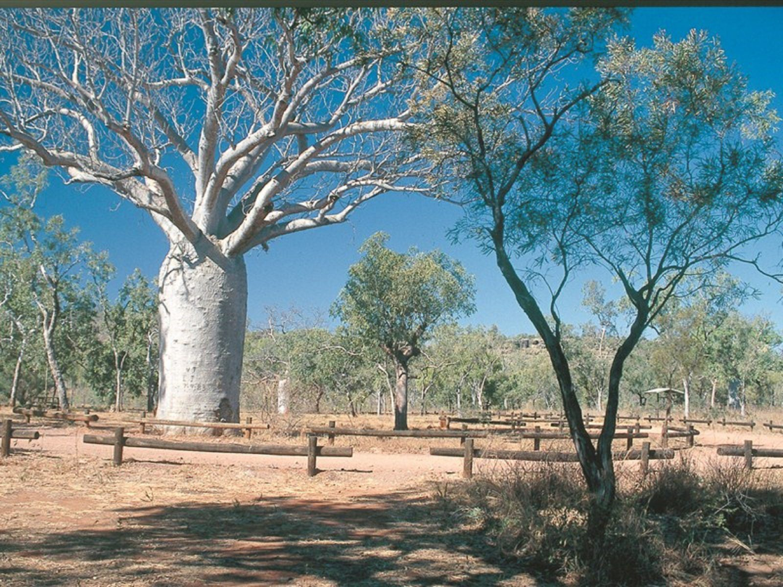 Bullita Homestead