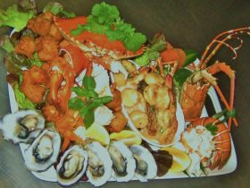 seafood platter with many sorts of seafood tasting options