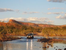 Small group kimberley tours pentecoast river crossing