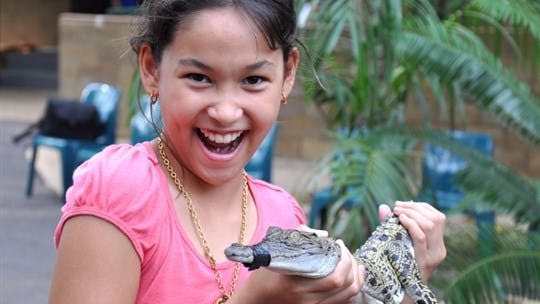 Crocodylus Park, Darwin Area, Northern Territory, Australia