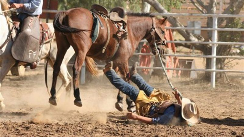 Daly Waters Campdraft Rodeo and Gymkhana