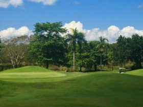 Darwin Golf Club, Darwin Area, Northern Territory, Australia