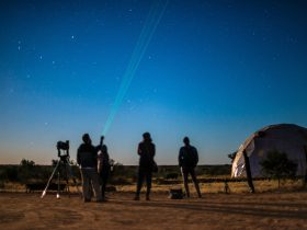 Viewing the night sky at the Earth Sanctuary, Alice Springs