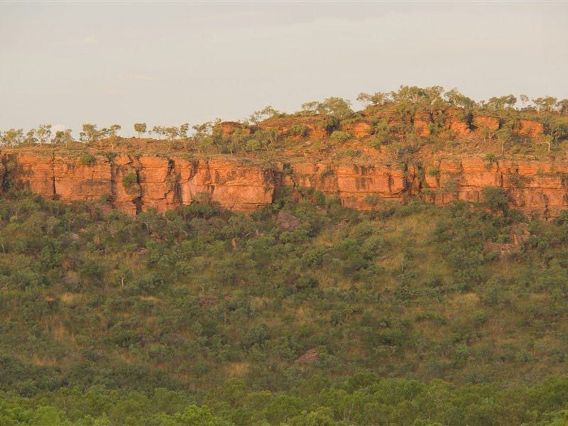 Escarpment Walk - Victoria River Area Northern Territory