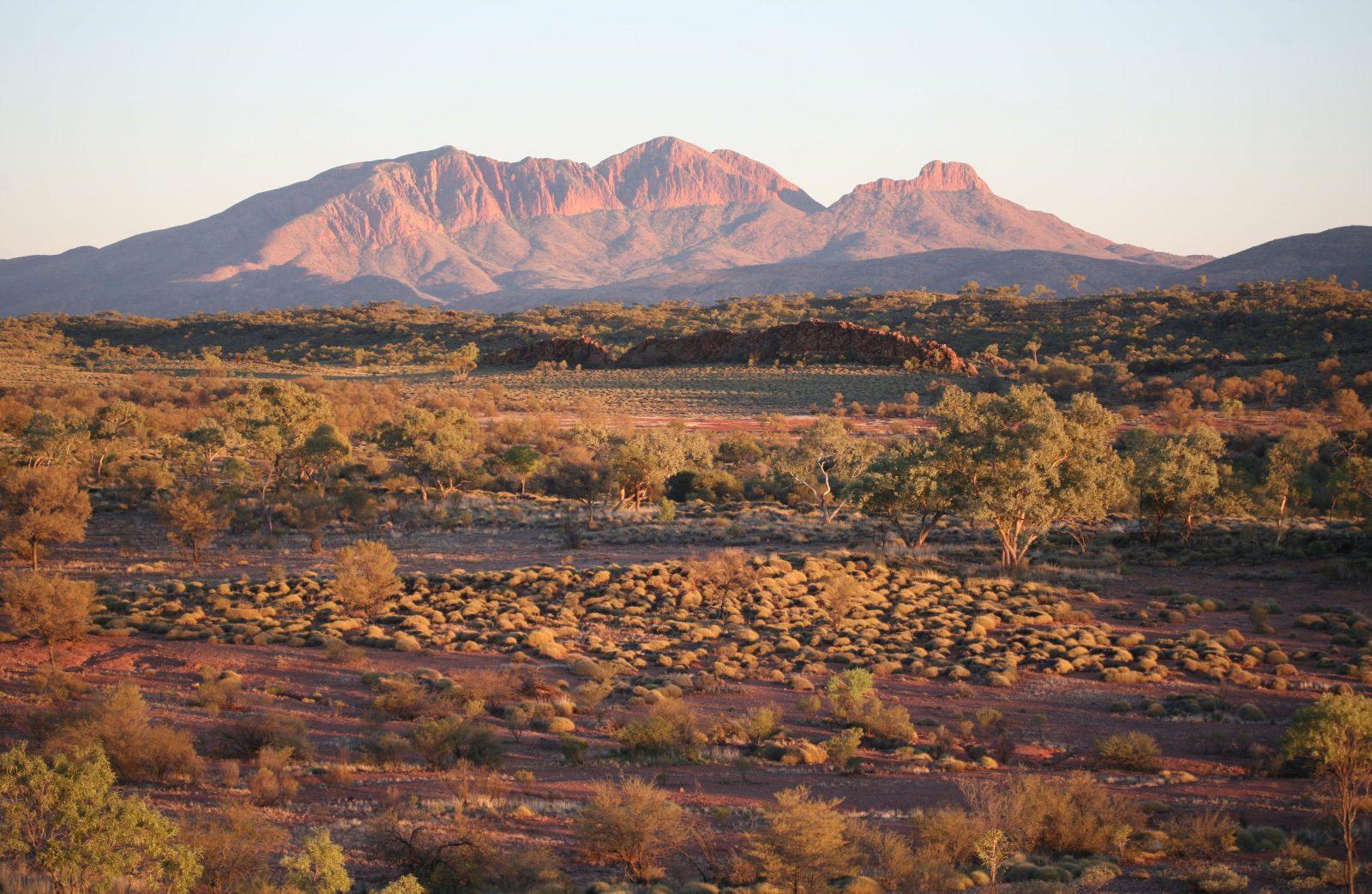 view across landscape to Mt Sonder