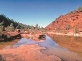 Finke - Alice Springs Area - Northern Territory