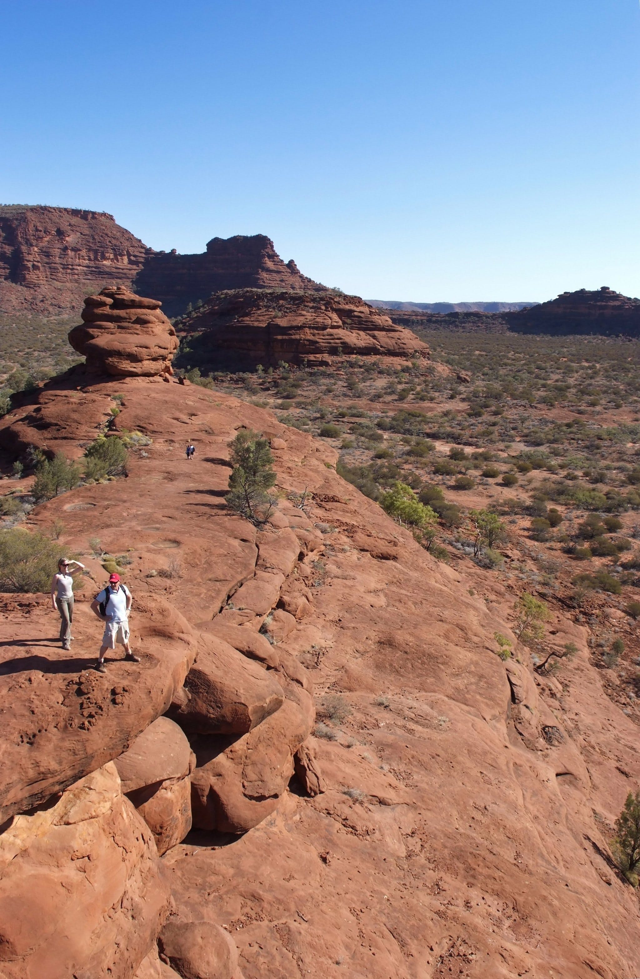 Looking out over Palm Valley in Finke Gorge National Park