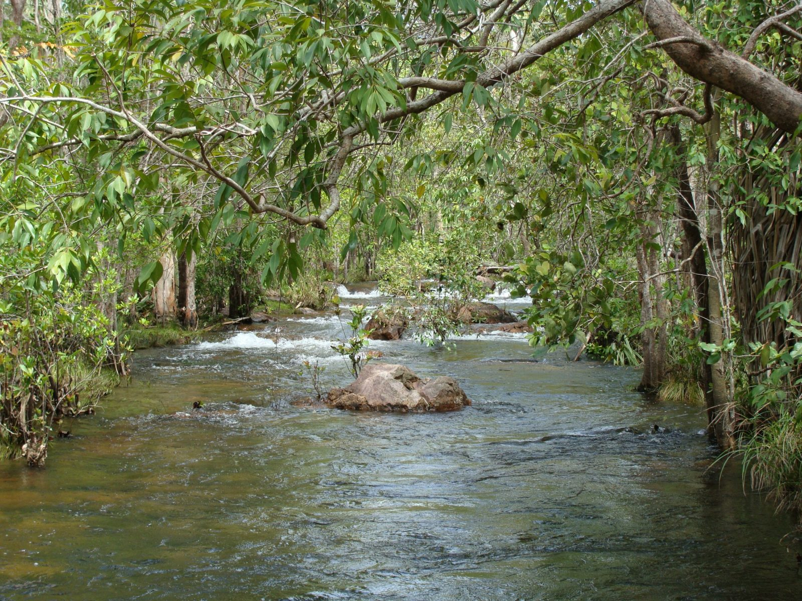 Florence Creek, Litchfield National Park.