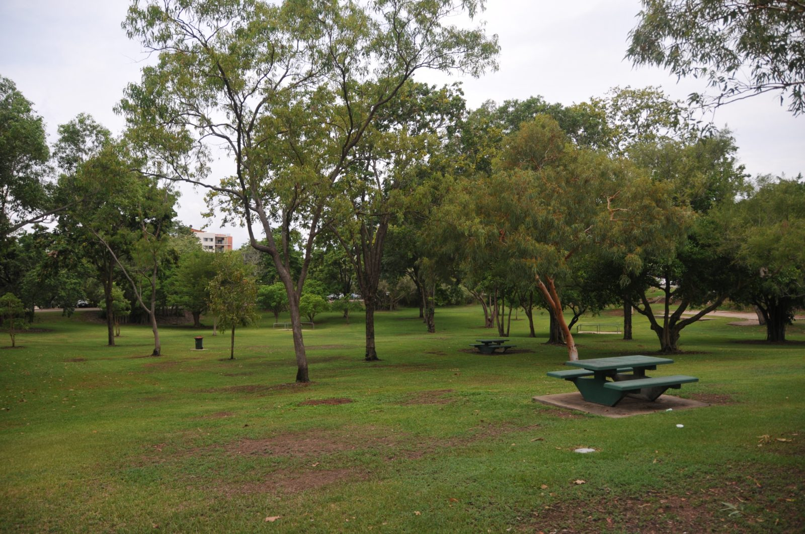 Frog Hollow – mature trees on the site. The landscape is well maintained