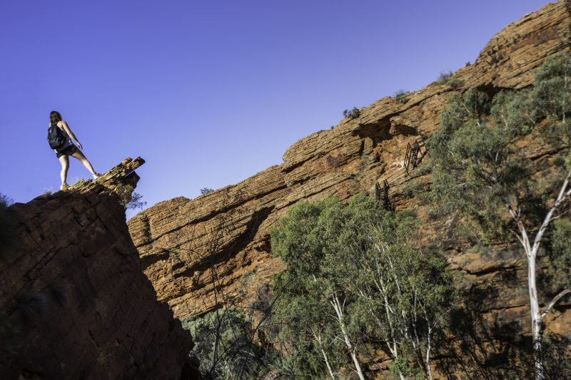 Australia_Alice_Springs_Kings_Canyon_Traveller