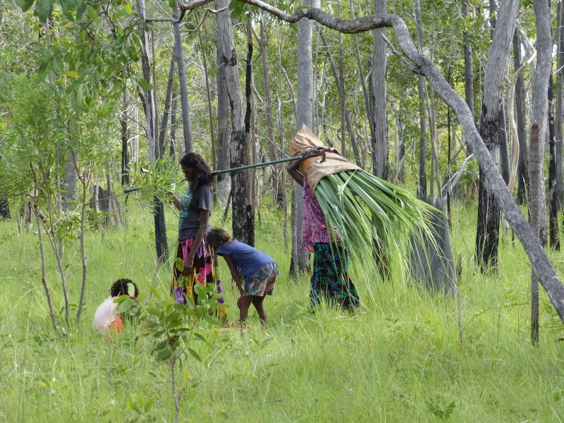 Lucy and family collecting art materials in the bush
