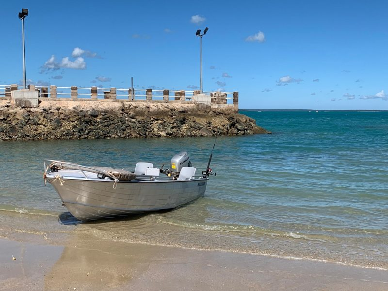 Mangrove Jack Boat for hire